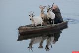 Плаваем через «козла»
