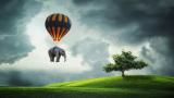 Измени одну букву – преврати муху в слона